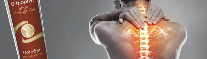 болки в ставите и мускулите