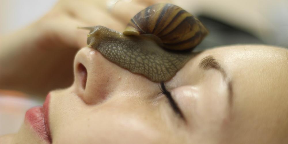Секрет от охлюви и серия Snail secret
