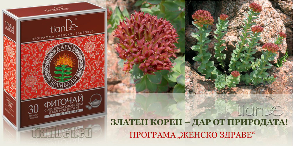Родиола (Златен корен) - чай