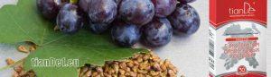 екстракт от гроздови семки
